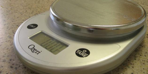 Ozeri Pronto Digital Food Scale Review