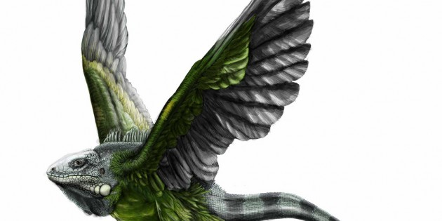 Gibberish Asks: Robert Dickson Illustration Animal Pair Contest