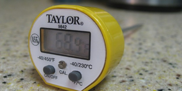 Taylor 9842 Commercial Waterproof Instant Digital Thermometer Review
